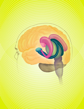 Brain Wave Vibrations