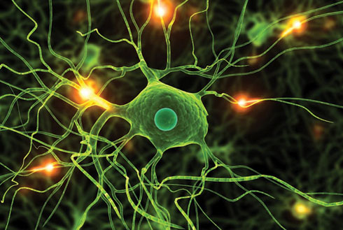 Building a Better Brain » Brain WorldBrain World